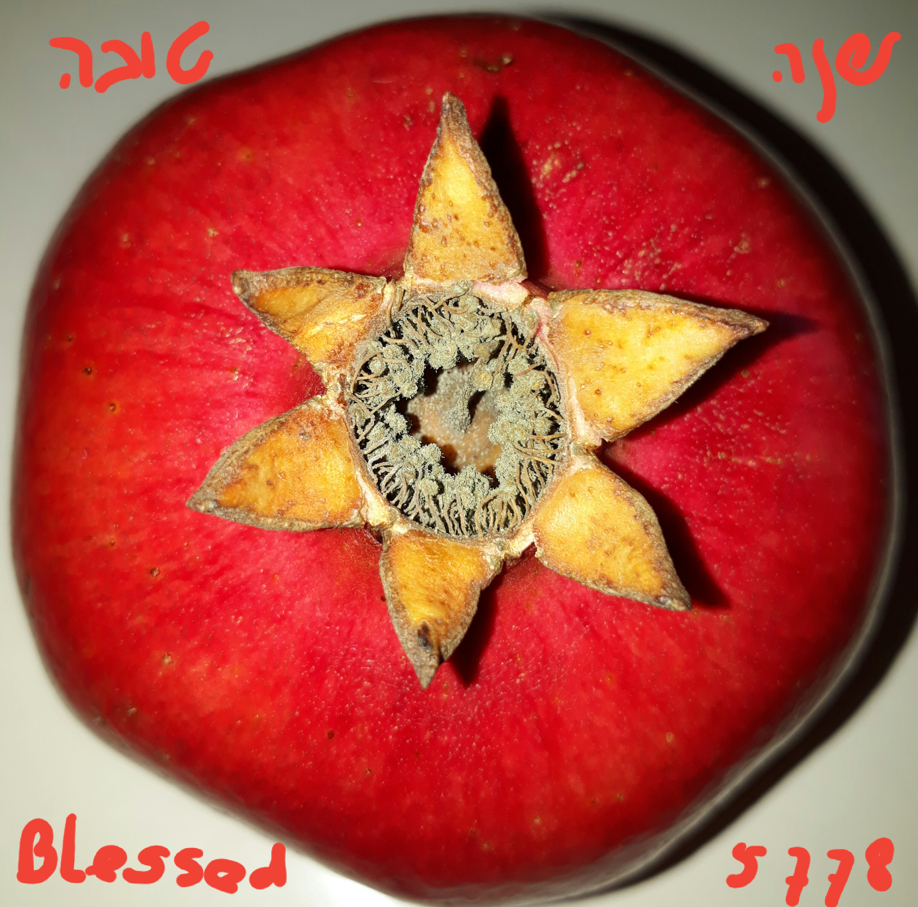 Vrucht gelukkig nieuwjaar