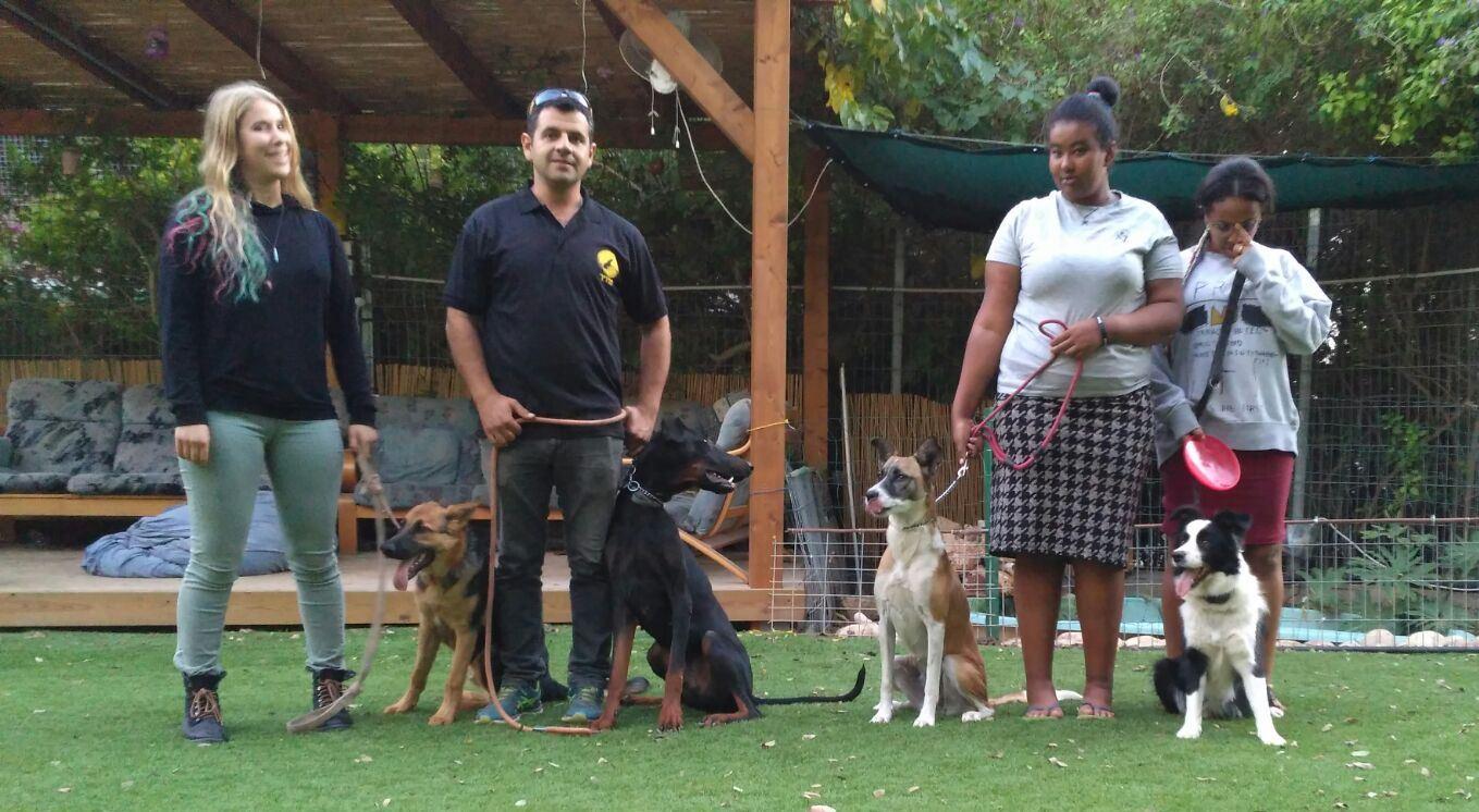 Mensen met honden