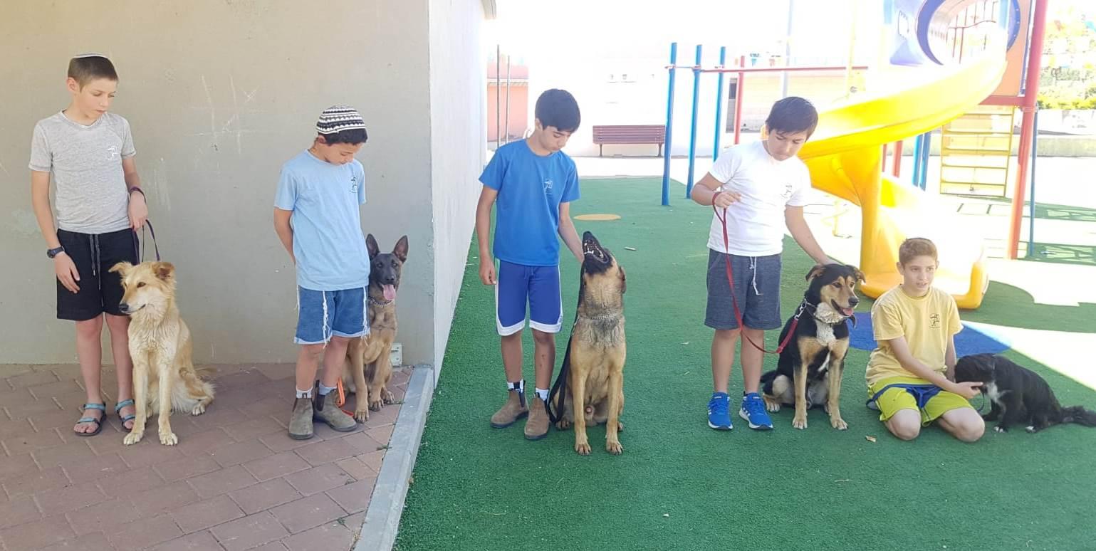 Kinderen met honden